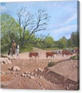 Texas Cattle Drive Canvas Print