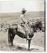 Texas: Cowboy, C1908 Canvas Print