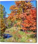 Texas Hill Country Autumn Canvas Print