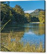 Texas Hill Country - The Frio River Canvas Print