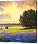 Texas Horses And Bluebonnets Canvas Print