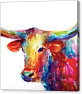 Texas Longhorn Art Canvas Print