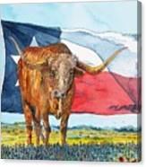 Texas  Canvas Print