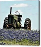 Texas Spring Canvas Print