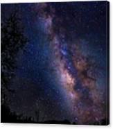 Texas Stars  4665 Canvas Print