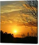 Texas Sun Canvas Print