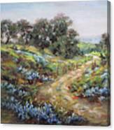 Texas Trail  Canvas Print