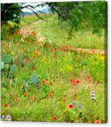 Texas Wildflowers And Cactus - Country Road Canvas Print