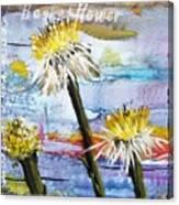 Texas Wildflowers Tp A E Canvas Print