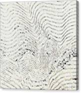 Texture 811 Canvas Print