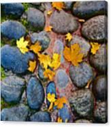 Texture. Autumn. Canvas Print