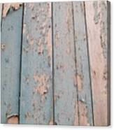 Texture Goree  Canvas Print
