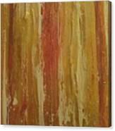 Textured Cinnamon Canvas Print