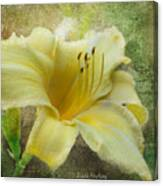 Textured Daylily Canvas Print