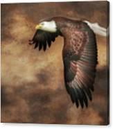 Textured Eagle 2 Canvas Print