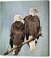 Textured Eagles Canvas Print