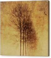 Textured Eerie Trees Canvas Print