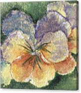 Textured Pansy Canvas Print