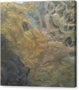 Textured Pour Canvas Print