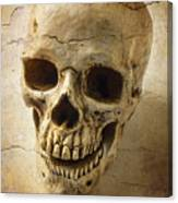Textured Skull Canvas Print