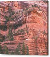 Textures Of Zion Canvas Print