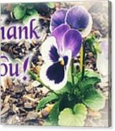 Thank You Pansy Canvas Print