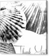 Thank You Seashell Canvas Print