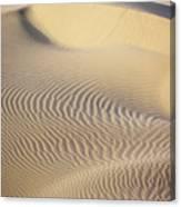 Thar Desert Dunes Canvas Print