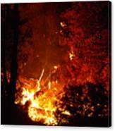 That Ain't No Campfire Canvas Print