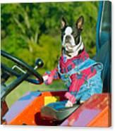 That Is One Hard Workin' Farm Dog Canvas Print