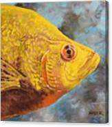 The Abyss Stares Back Canvas Print