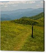 The Appalachian Trail Crossing Max Patch Canvas Print