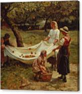 The Apple Gatherers Canvas Print