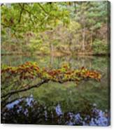 The Arsenic Lake Devon Great Consols Canvas Print
