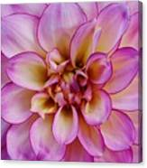 The Art In Flowers 1 Canvas Print