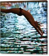 The Art Of Diving 5 Canvas Print