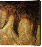 The Art Of Sand Canvas Print