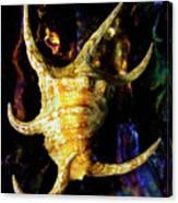 The Arthritic Spider Conch Seashell Canvas Print