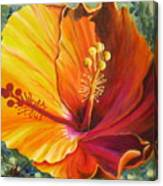 The Artisan Hibiscus Canvas Print