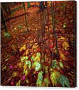 Autumn V6 Canvas Print