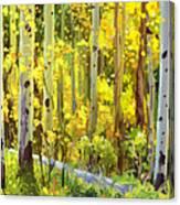 The Autumn Road..... Canvas Print