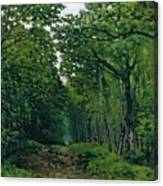 The Avenue Of Chestnut Trees Canvas Print
