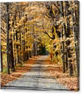 The Back Road In Autumn Canvas Print