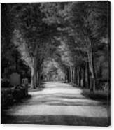 The Backroad Canvas Print