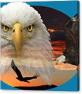 The Bald Eagle 2 Canvas Print
