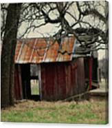 The Barn Out Back Canvas Print