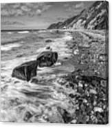 The Beach. Canvas Print