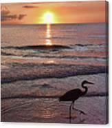 The Beachcomber Shuffle Canvas Print