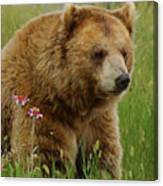 The Bear 1 Dry Brushed Canvas Print