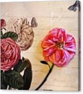 The Beauty Of A Dried Rose Canvas Print